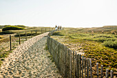 Way through the dunes to the beach, Quiberon peninsula , Brittany, France
