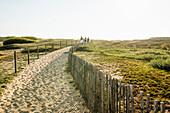 Weg durch die Dünen zum Strand, Halbinsel Quiberon, Bretagne, Frankreich