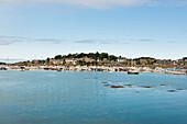 Hafen und Stadtansicht, Ploumanach, Côte de Granit Rose, Côtes d'Armor, Bretagne, Frankreich