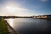 Vögel fliegen am Himmel über dem Fluss Corrib am Hafen von Galway bei Sonnenuntergang, Galway, County Galway, Irland, Europa