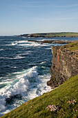 The Cliff Walk in Kilkee stretches from the bay to the north and south along the coast and shows the rough beauty of the landscape where the sea crashes agains the edge of the land, Kilkee, County Clare, Ireland, Europe