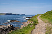 Trail to Georges Head along the Cliffs of Kilkee overlooking the coastline, Byrnes Cove, Kilkee, County Clare, Ireland, Europe