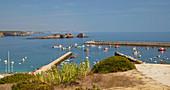 Boats at Sagres port, District Faro, Algarve, Portugal, Europe