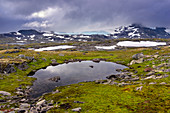 Sognefjellet highlands of Oppland, Norway, Europe