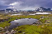 Das Hochland von Sognefjellet, Oppland, Norwegen,  Europa