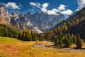 Venegia valley near Malga Venegiotta di Tonadico with Dolomite mountains in background, Trentino, Italy