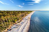 Beach on the Darss peninsula in summer, Baltic Sea, Mecklenburg-Western Pomerania, Germany, Europe