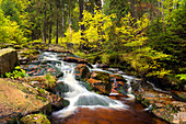 River running through the Bode gorge in autumn, Saxony-Anhalt, Germany, Europe