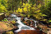 Ein Fluss durch das Bodetal im Herbst, Harz, Sachsen-Anhalt, Deutschland, Europa