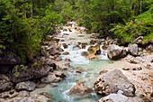 A stream near Hintersee lake in Berchtesgadener Land, Bavaria, Germany, Europe