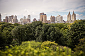 View from rooftop of Metropolitan Museum of Art at surrounding Central Park, 5th Ave, Manhattan, NYC, New York City, United States of America, USA, Northern America