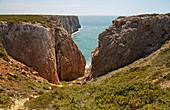 Steep coast near Sagres, Parque Natural do Sudoeste Alentejano e Costa Vicentina, Atlantic Ocean, District Faro, Region of Algarve, Portugal, Europe