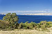 Blick von der Küstenstraße auf die Insel Rab, Primorje-Gorski kotar, Kvarner Bucht, Kroatien, Südeuropa, Europa