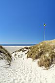 Path through the dunes to the beach, Nebel, North Frisian Island Amrum, North Sea, Schleswig-Holstein, Northern Germany, Germany, Europe