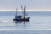 Fishing boat on the North Sea, Büsum, Dithmarschen, Schleswig-Holstein, Northern Germany, Germany, Europe
