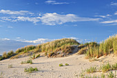 Dunes in St. Peter-Ording, peninsula Eiderstedt, North Frisia, Schleswig-Holstein, Northern Germany, Germany, Europe
