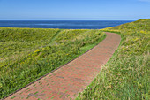 Path across the North Sea island Helgoland, Schleswig-Holstein, Northern Germany, Germany, Europe