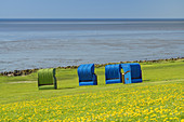 Beach chairs on the North Frisian Island Pellworm, North Sea, Schleswig-Holstein, Northern Germany, Germany, Europe