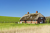 Thatched house on the North Frisian Island Pellworm, North Sea, Schleswig-Holstein, Northern Germany, Germany, Europe