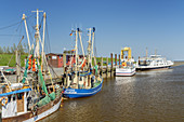 Fishing boats in the harbour of the North Frisian Island Pellworm, North Sea, Schleswig-Holstein, Northern Germany, Germany, Europe