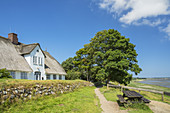 Thatched house in Keitum, North Frisian Island Sylt, North Sea coast, Schleswig-Holstein, Northern Germany, Germany, Europe
