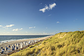 Beach with beach chairs in List, North Frisian Island Sylt, North Sea coast, Schleswig-Holstein, Northern Germany, Germany, Europe