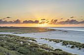 Sunset at the beach on the peninsula Ellenbogen, List, North Frisian Island Sylt, North Sea coast, Schleswig-Holstein, Northern Germany, Germany, Europe