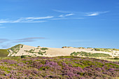 Big shifting sand dune in Listland, List, North Frisian Island Sylt, North Sea coast, Schleswig-Holstein, Northern Germany, Germany, Europe