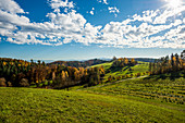 Landscape in autumn with Swiss Alps, near Salem, Lake Constance, Baden-Württemberg, Germany
