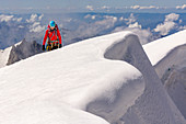 Mountaineer at the summit of Pointe Walker, Battles in the foreground, Grandes Jorasses, Mont Blanc group, France