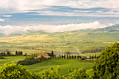 Cypresses and farmhouse on the rolling hills, Orcia valley, Siena province, Tuscany, Italy