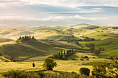 Rolling hills in Orcia valley, Siena province, Tuscany, Italy
