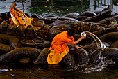 Washing of sleeping Vishnu statue at Budanilkantha, Kathmandu, Nepal. Nepalese, Asia, Asian, Himalayan Country, Himalayas.