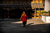 Monk walking at the Rinpung Dzong. Paro, Bhutan, Himalayan Country, Himalayas, Asia, Asian.