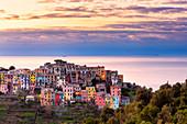 Colourful houses of Corniglia at sunrise. Cinque Terre, Liguria, Italy, Europe.