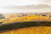 Blick auf die mittelalterliche Burg Aigle und die umliegenden Weinberge und Eisenbahn im Herbst, Kanton Waadt, Schweiz