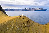 Aerial view of Kallur Lighthouse (Kalsoy island, Faroe Islands, Denmark)
