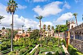 Spain, Andalusia, Seville. El Real Alcazar de Sevilla, gardens