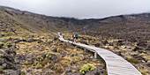 Hikers walking on the footpath of Tongariro Alpine Crossing on cloudy day. Tongariro NP, North Island, New Zealand.