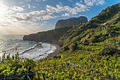 Weinberg- und Obstplantagen, Faial, Santana Gemeinde, Madeira Region, Portugal