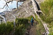 Weg von Pico Ruivo nach Pico do Areeiro, Achada tun Teixeira, Santana-Stadtbezirk, Madeira-Region, Portugal