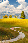 Mom with her daughter walks on the Non valley paths, Cles, Trento province, Trentino Alto Adige, Italy, Europe (MR)