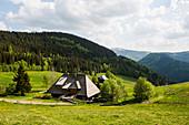 Berggasthof, Stübenwasenhütte, bei Hinterzarten, Schwarzwald, Baden-Württemberg, Deutschland