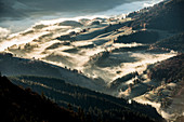 Valleys with morning fog in autumn, view from Belchen, Neuenweg, Black Forest, Baden-Wurttemberg, Germany