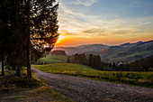 View on hilly landscape in autumn, sunset, at St Märgen, Black Forest, Baden-Wurttemberg, Germany