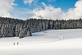 Snowy landscape and cross country skiers, Thurner, near Hinterzarten, Black Forest, Baden-Wurttemberg, Germany