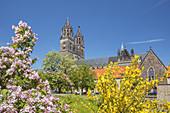 Magdeburg Cathedral and Fürstenwall, Magdeburg, Saxony-Anhalt