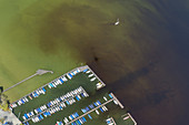View of the marina in Seeshaupt at Lake Starnberg, Fünfseenland, Upper Bavaria, Bavaria, Germany,
