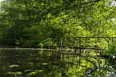 Alte Holzbrücke beim Wasserwandern durch das wilde UNESCO Biosphärenreservat Spreewald in Brandenburg