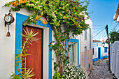 Narrow alley in Ferragudo with flowering plants, Algarve, Portugal